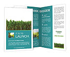 Pine Forest Brochure Templates
