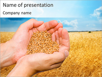 Riche Récolte de blé Modèles des présentations  PowerPoint