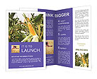 Rich Corn Harvest Brochure Templates