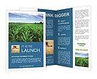 Corn In Field Brochure Templates