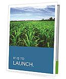 Corn In Field Presentation Folder