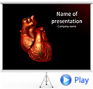 Human Heart Animated PowerPoint Template