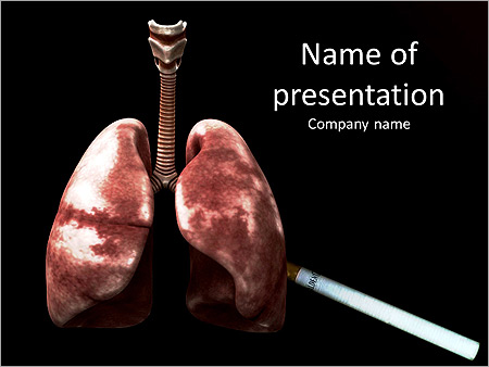 Lungs Of Human Video