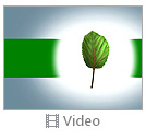 Tiny Green Leaf Video
