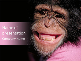 Chimpanzee PowerPoint Template