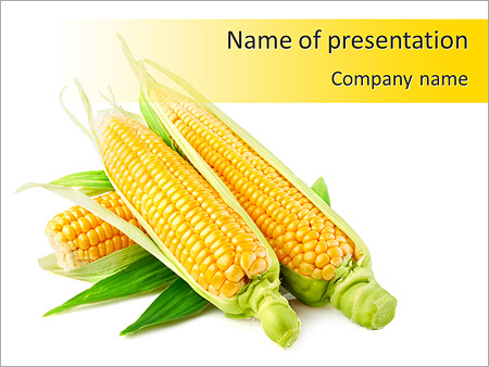 Yellow corn powerpoint template backgrounds id 0000005962 yellow corn powerpoint templates toneelgroepblik Choice Image