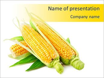 Maïs jaune Modèles des présentations  PowerPoint