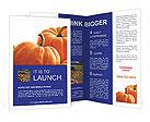 0000050098 Brochure Templates
