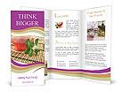 0000050100 Brochure Templates