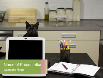 0000050154 PowerPoint Template
