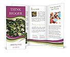 0000050451 Brochure Templates