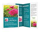 0000050509 Brochure Templates