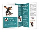0000050622 Brochure Templates