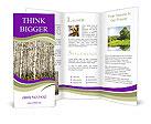 0000050798 Brochure Templates