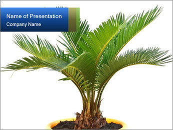 0000050992 PowerPoint Template
