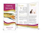 0000051040 Brochure Templates