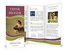 0000051294 Brochure Templates