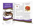 0000051326 Brochure Templates