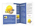 0000051338 Brochure Templates