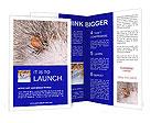 0000051686 Brochure Templates