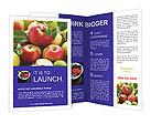 0000051823 Brochure Templates