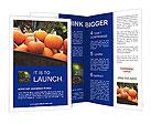 0000051879 Brochure Templates
