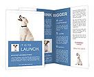 0000051922 Brochure Templates