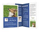 0000051981 Brochure Templates