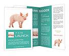 0000052525 Brochure Templates