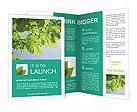 0000052565 Brochure Templates