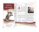 0000052580 Brochure Templates