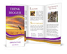 0000052701 Brochure Templates