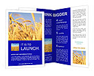 0000052719 Brochure Templates