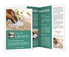 0000052864 Brochure Templates
