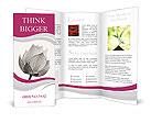 0000052869 Brochure Templates