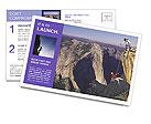 0000053041 Postcard Template