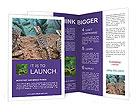 0000053052 Brochure Templates