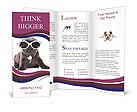 0000053081 Brochure Templates