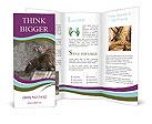 0000053251 Brochure Templates