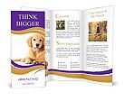 0000053271 Brochure Templates