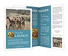0000053365 Brochure Templates