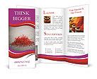 0000053565 Brochure Templates