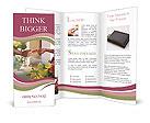 0000053611 Brochure Templates