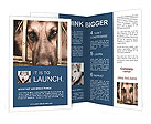 0000053787 Brochure Templates