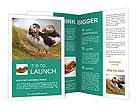 0000053929 Brochure Templates