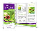 0000054293 Brochure Templates