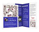 0000054574 Brochure Templates
