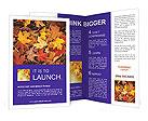 0000055496 Brochure Templates