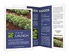 0000055595 Brochure Templates