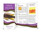 0000055598 Brochure Templates